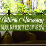 Mulu Marriott Resort and Spa Tour & Review | Luxury Oasis in Sarawak Borneo at Mulu Park